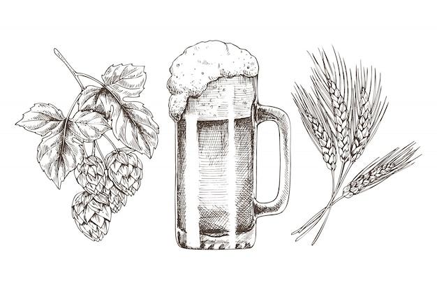 Trigo hop e cerveja espumosa em cálice de vidro brilhante