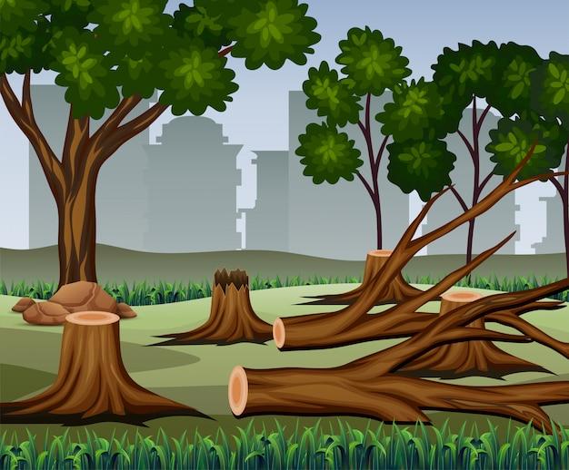 Tronco de árvore foi cortado com muitas árvores na floresta
