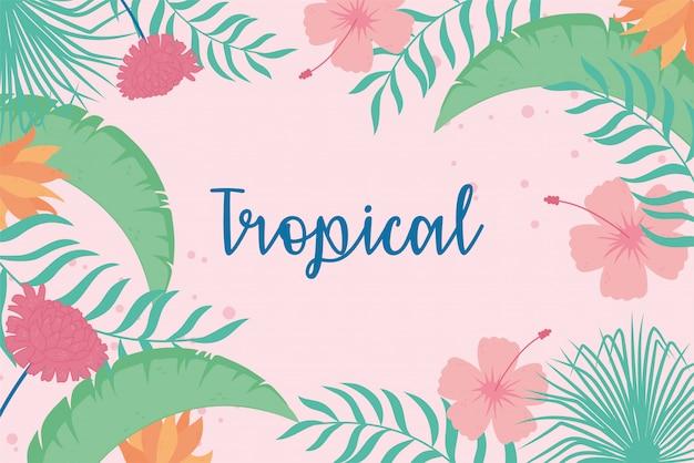 Tropical deixa exóticas flores hibisco palm folha letras