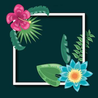 Tropical deixa ilustração escura