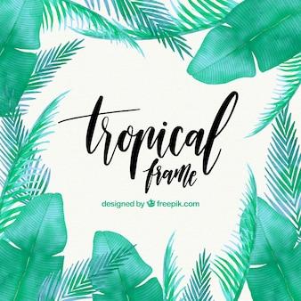 Tropical, quadro, folhas, aquarela, palmas