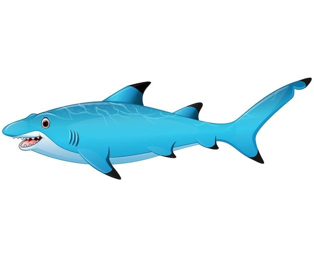 Tubarão bonito dos desenhos animados