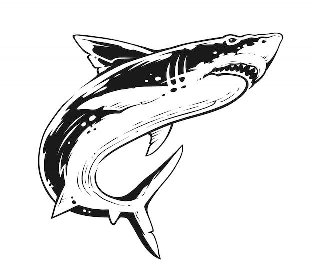 Tubarão em movimento. arte vetorial de contraste preto e branco.