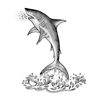 Tubarão pulando mão estilo vintage de desenho