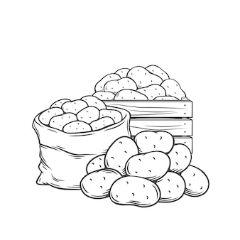 Tubérculos de batata contornam ilustração monocromática desenhada à mão