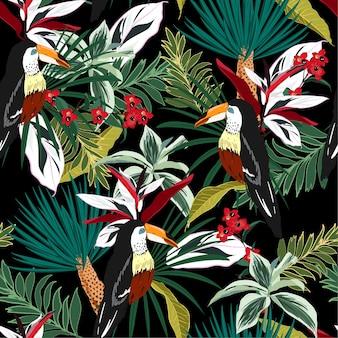 Tucano colorido