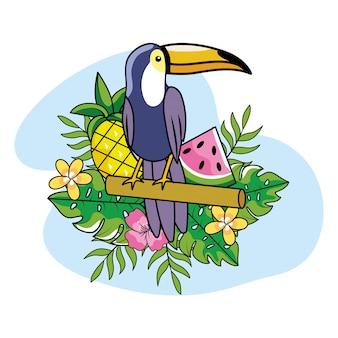 Tucano com abacaxi e melancia com plantas no verão
