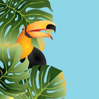 Tucano tropical da floresta tropical com fundo das folhas para o verão
