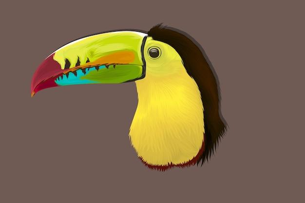 Tucano tropical desenhado à mão realista