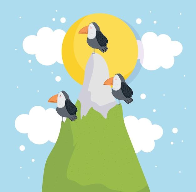 Tucanos fofos e montanha