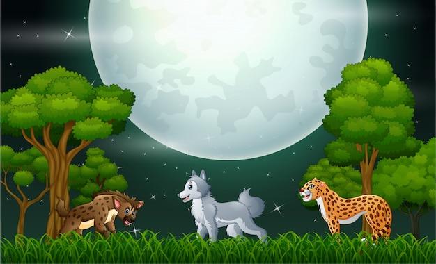 Um animal diferente na selva à noite