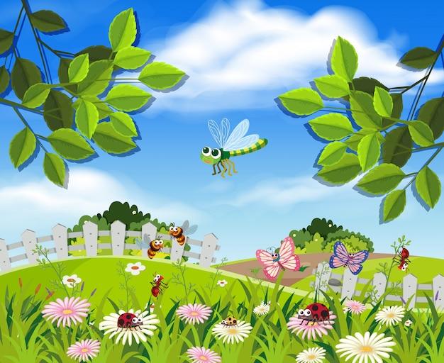 Um belo jardim e insetos