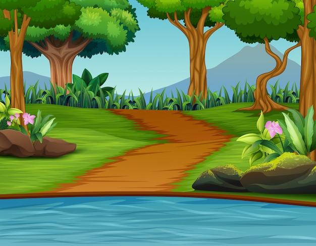 Um, bonito, verde, natureza, paisagem, fundo