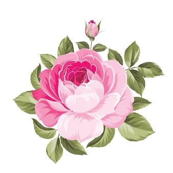 Um buquê decorativo de primavera de flores rosas.
