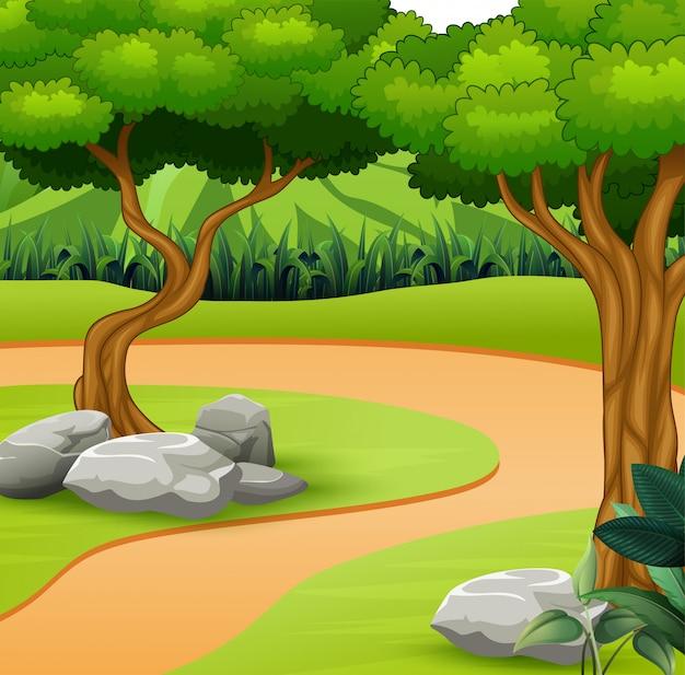 Um caminho de terra no fundo da natureza