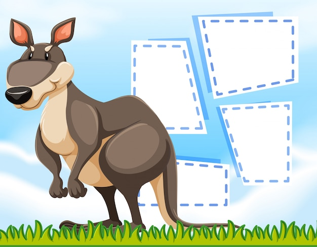 Um canguru no modelo em branco