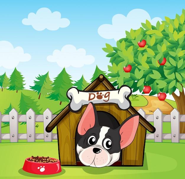 Um cão dentro de uma casa de cachorro em um quintal com uma macieira