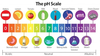 Um cartaz de educação da escala de pH