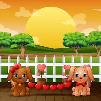 Um casal de cães dos namorados com coração vermelho no parque