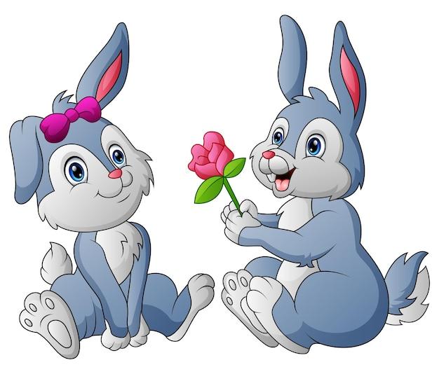 Um casal de coelho fofo dando sua flor amada