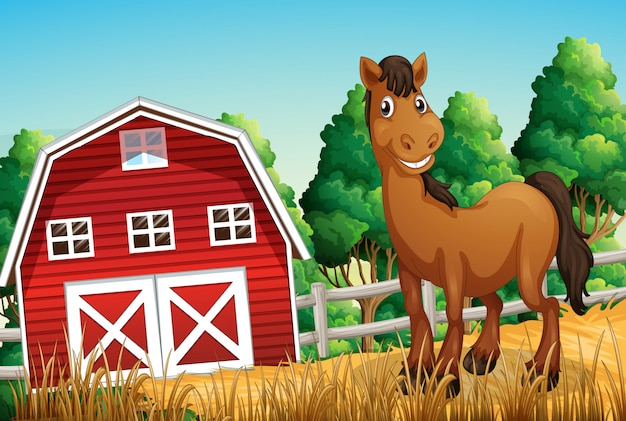 Um cavalo na fazenda