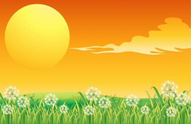 Um cenário de pôr-do-sol e a colina peacful