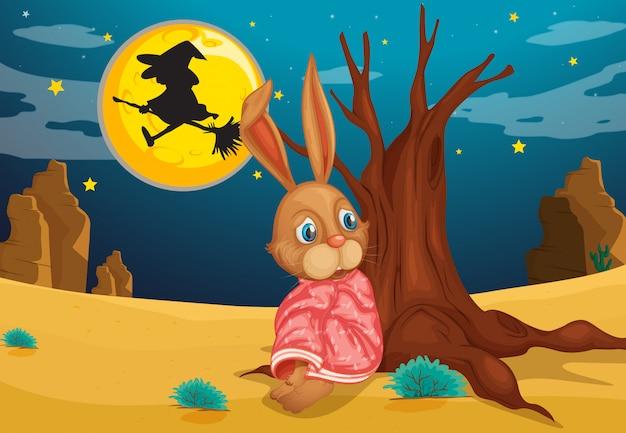Um coelho ao lado de um grande tronco de uma árvore