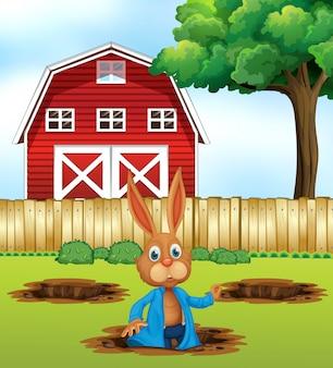 Um coelho cavando um buraco
