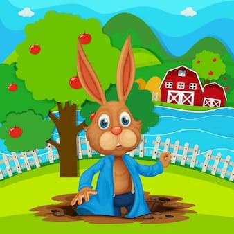 Um coelho no jardim