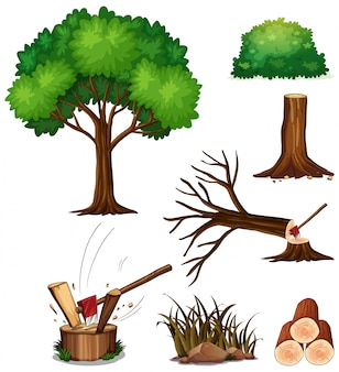 Um conjunto de árvore de corte
