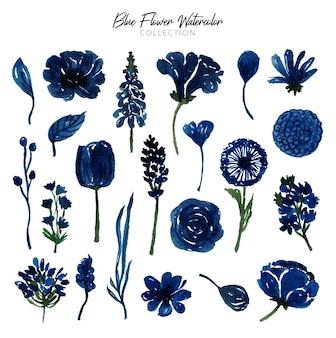 Um conjunto de bela aquarela de flores azuis desenhadas à mão