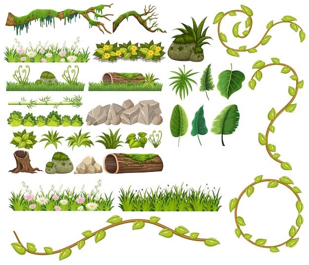 Um conjunto de elemento de selva
