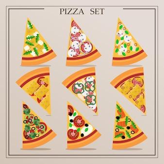 Um conjunto de fatias planas de pizza ilustração em vetor de pizza variada