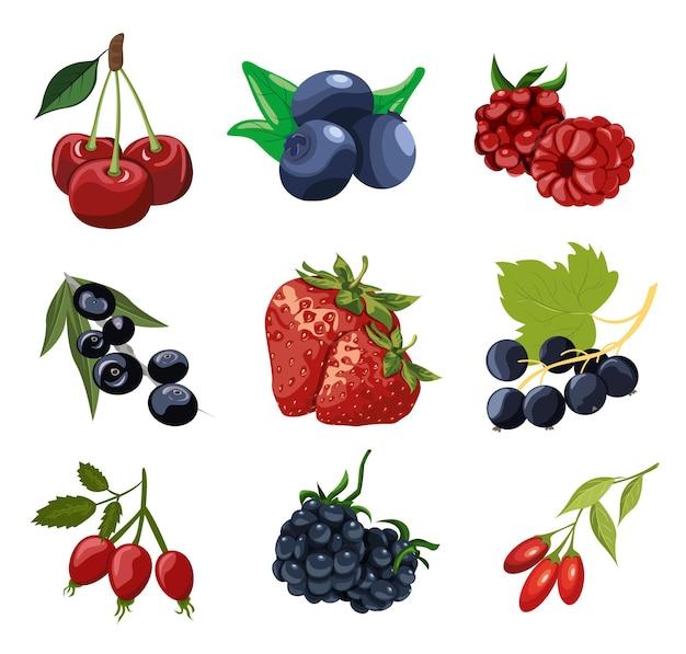 Um conjunto de frutas brilhantes e diferentes