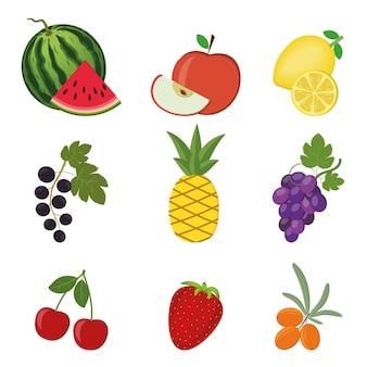 Um conjunto de frutas e bagas isoladas em um fundo branco.