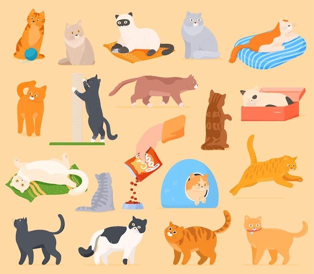 Um conjunto de gatos de desenho animado que brincam, descansam, dormem, comem.