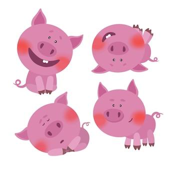 Um conjunto de ilustrações com porcos bonitos dos desenhos animados em diferentes poses