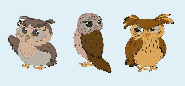 Um conjunto de ilustrações vetoriais de corujas fofas