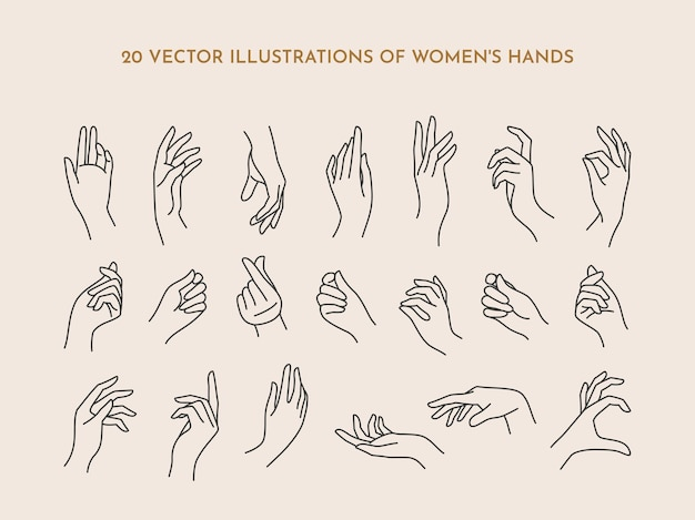 Um conjunto de mãos femininas de ícones em um estilo linear mínimo moderno. ilustração em vetor de mãos femininas com vários gestos