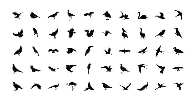 Um conjunto de modelos de pássaros selvagens. ícones pretos isolados