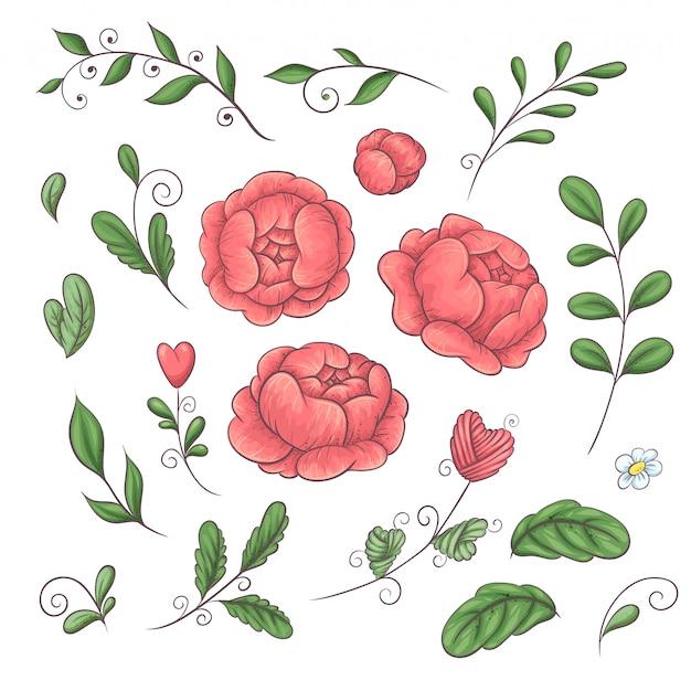 Um conjunto de peônias e elementos florais