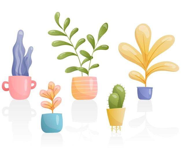 Um conjunto de plantas caseiras em vasos de várias formas incomuns e cores brilhantes com reflexo.