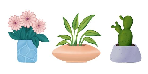 Um conjunto de plantas de interior em vasos decorativos