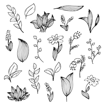 Um conjunto de rabiscos de flores e plantas desenhados à mão