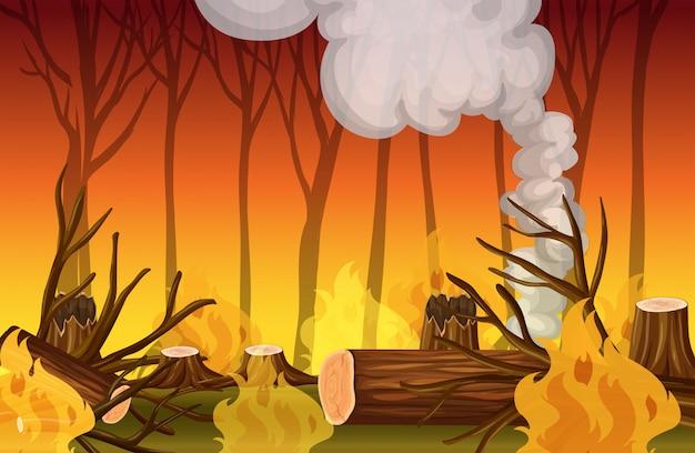 Um desastre de fogo selvagem de floresta