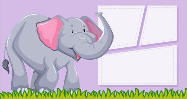 Um elefante no modelo em branco