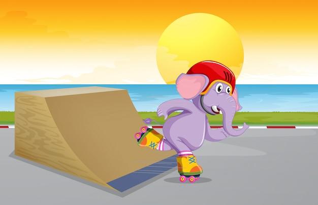 Um elefante no parque de skate