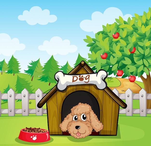 Um filhote de cachorro e sua comida de cachorro