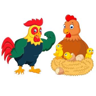 Um frango com muitos ovos quebrados e