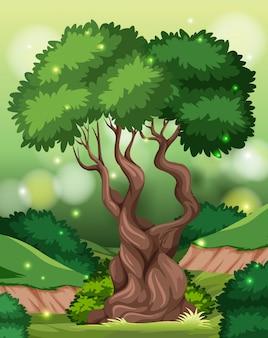 Um fundo de floresta tropical